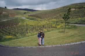 turckheim-ribeauville-vineyards09