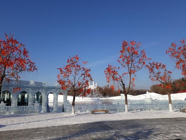 snow-festival-45