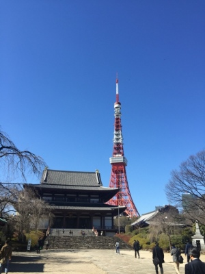 Shinkoin temple with Tokyo tower in the background