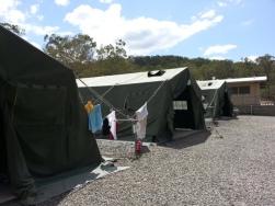 Camp Growl2