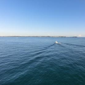 Ferry to Mornington2