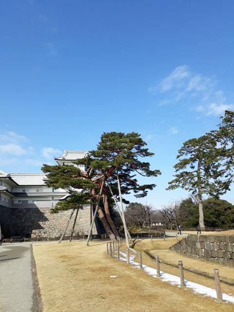 kanagawa-castle15