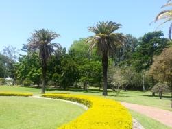 Rockhampton botanical garden2