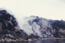 Waimangu volcanic alley54