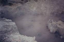 Whakarewarewa Geothermals12