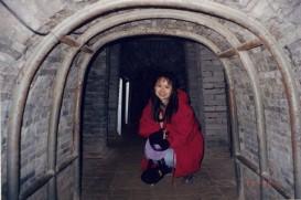 Wuwei Han Leitai tomb1