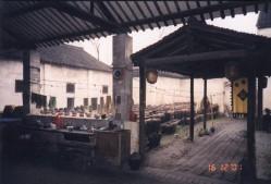 Wuzhen06