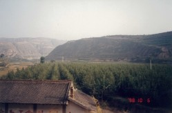 Drive through Shaanxi1
