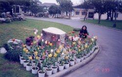 Xizhi guesthouse