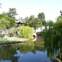 Chinese Garden - Bonsai garden19