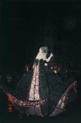 Magic Kingdom night parade2