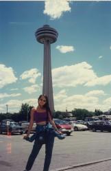 Niagara Falls Towers1