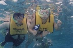 Snorkel Caymans1