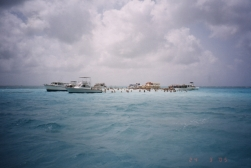 Stingray city03