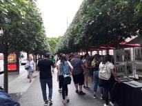 Central Park - MET 9