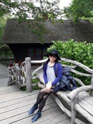 Central Park - Swedish House 3