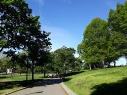 Boston Commons4