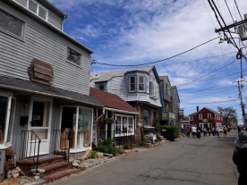 Rockport Bearneck skin2
