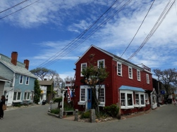 Rockport Bearneck skin4