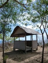 Dimakya Tree House