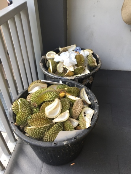 Durian Party (Aug) 2