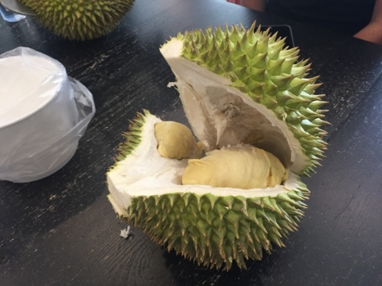 Durian Party (Aug) 6