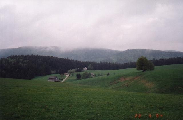 The Schwarzwald