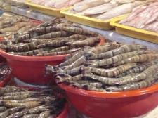 Seafood mkt + restaurant3