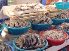 Seafood mkt + restaurant4