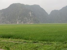 Trang An area 10