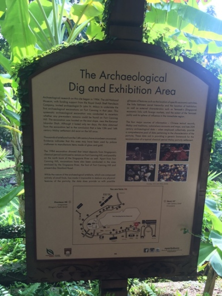 Archaeological dig site 1