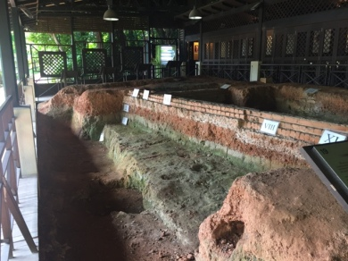 Archaeological dig site 3