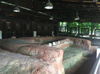Archaeological dig site 5