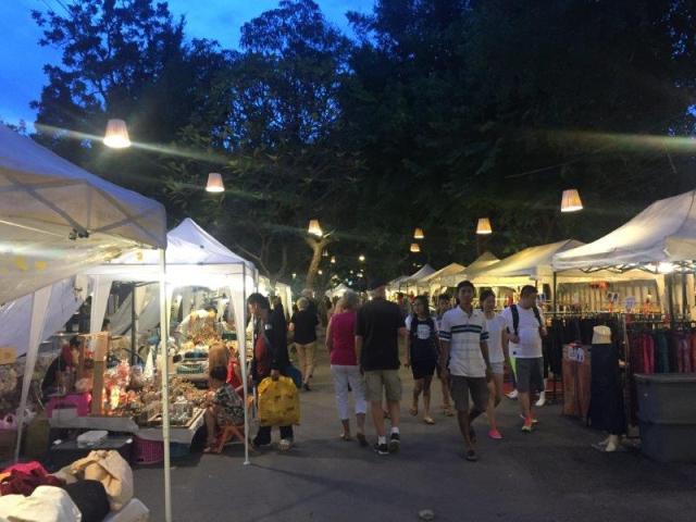 Cicada market 7