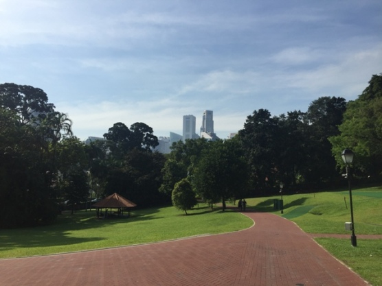Fort Canning Green 1