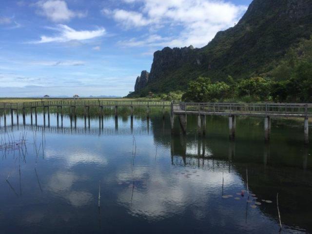 Khao Sam marshland18