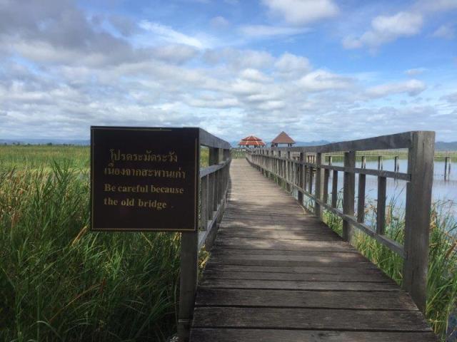 Khao Sam marshland6