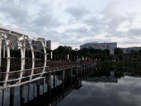 Lower Seletar reservoir20