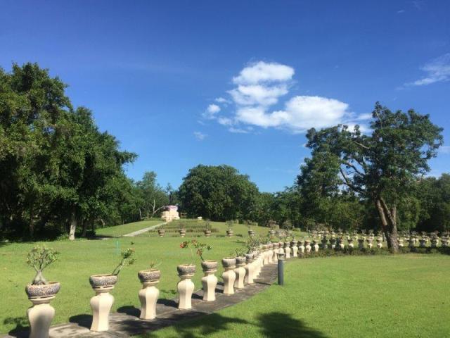 Mrigadayavan Palace 2