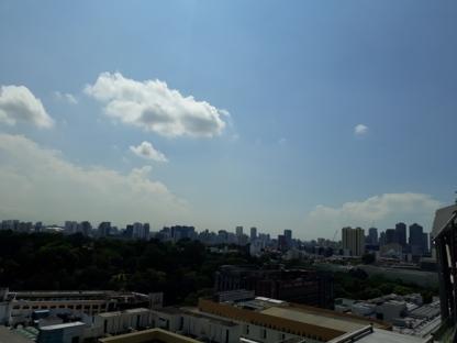 OC rooftop view19