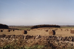 Countryside to Bibury2