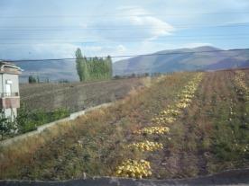 Drive to Cappadocia3