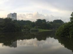 Eco Lake 2
