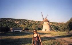 Folk village 6