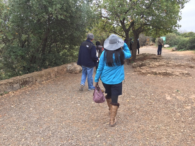 Banias Falls 3