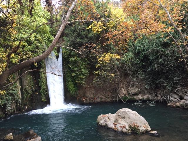 Banias Falls 7