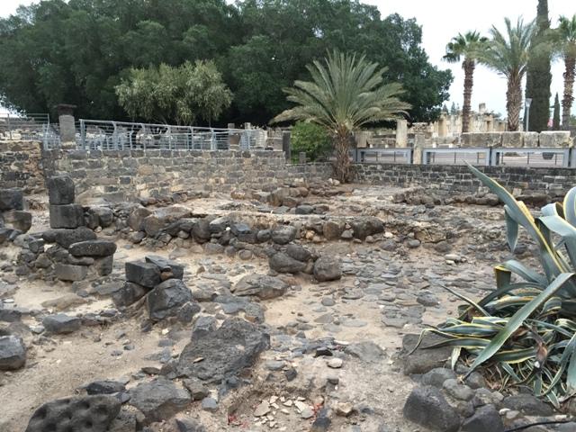Capernaum 2