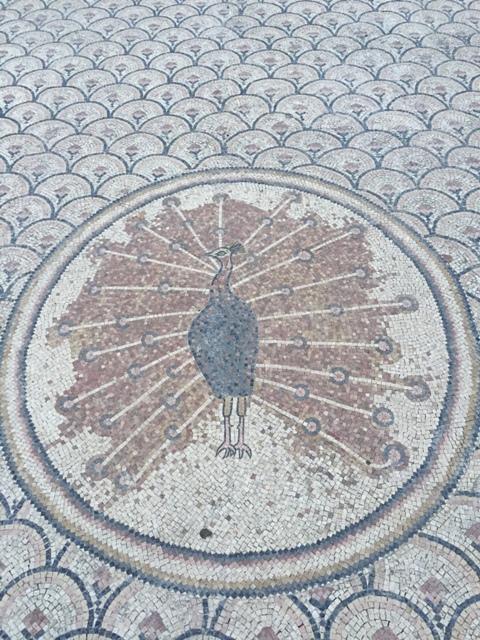 Capernaum 31