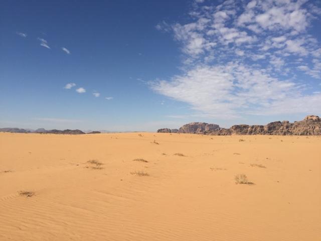 Desert safari drive 13