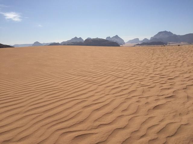 Desert safari drive 44